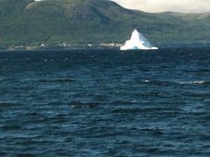 Iceberg at King's Point - wow!
